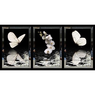 Beyaz Kelebek Ve Gül Aynalı Tablo