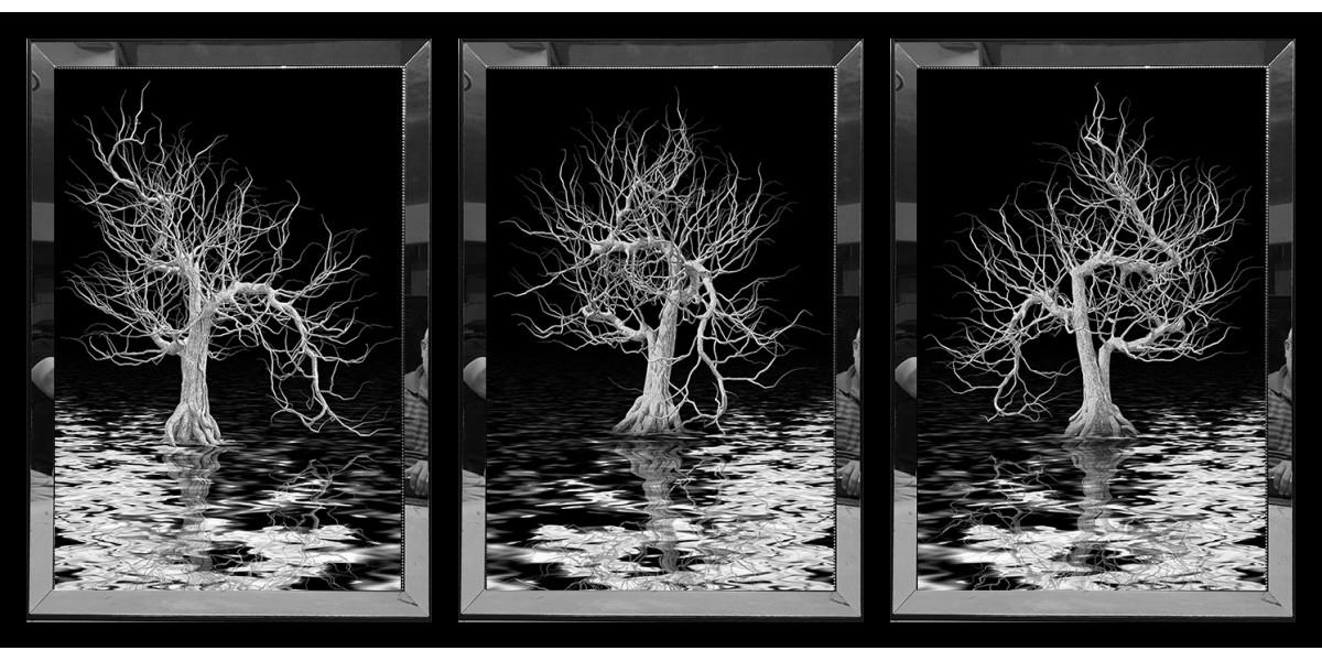 Ağaç Aynalı Tablo